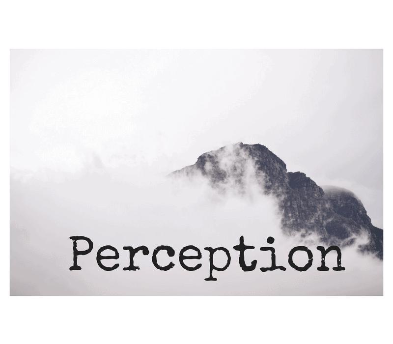 Det finns två betydelser av termen perception!